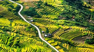 28-Vietnam-shutterstock_366732290